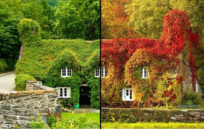 Осеннее преображение природы