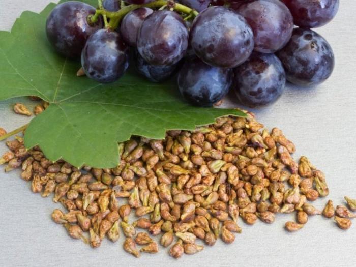 Польза и применение виноградной косточки! 7 вещей в вашем доме, которые провоцируют рак