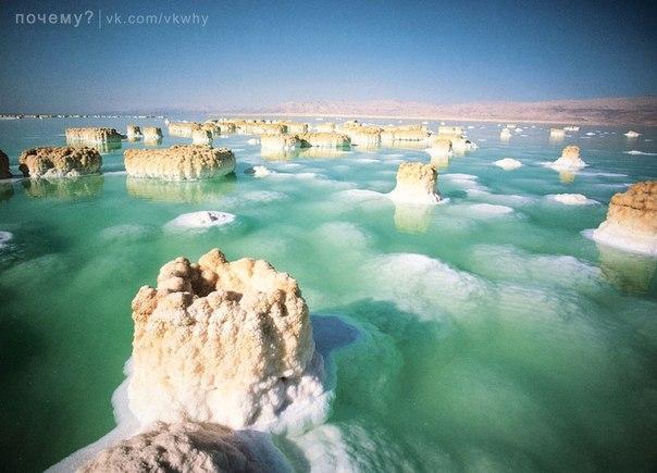"""Почему Мертвое море называют """"морем жизни""""?"""