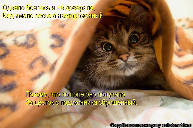 Котоматрица: Одеяло боялось и не доверяло, Вид имело весьма настороженный. Потому, что по попе оно получало За цветок с подоконника сброшенный.