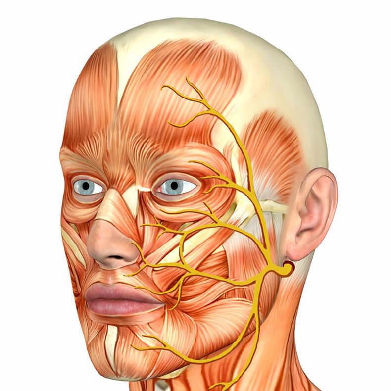 Невралгия тройничного нерва: что важно знать!