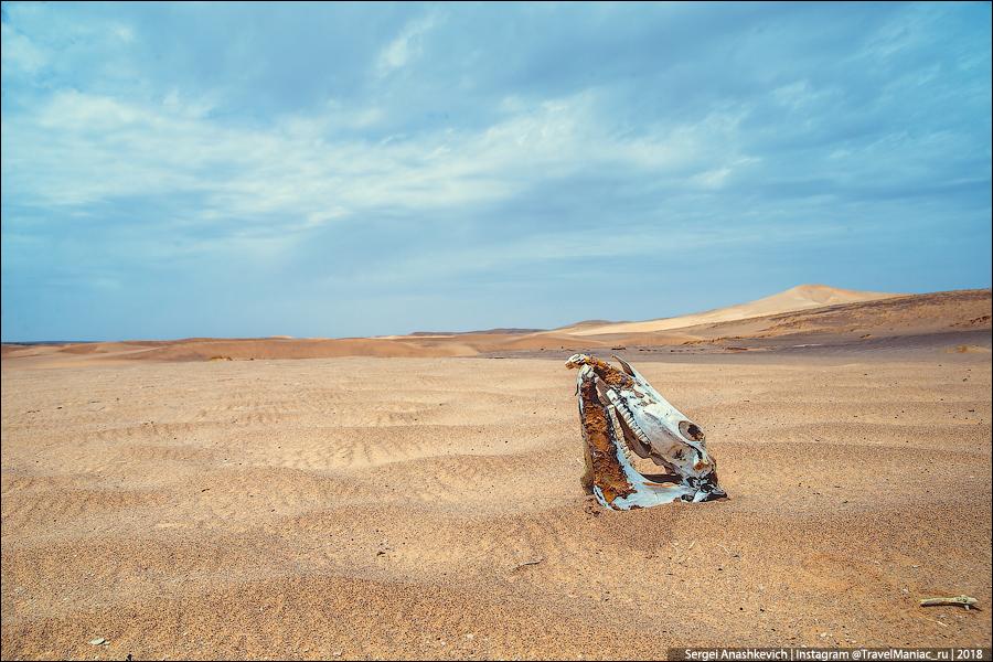 Монголия - страна трупов