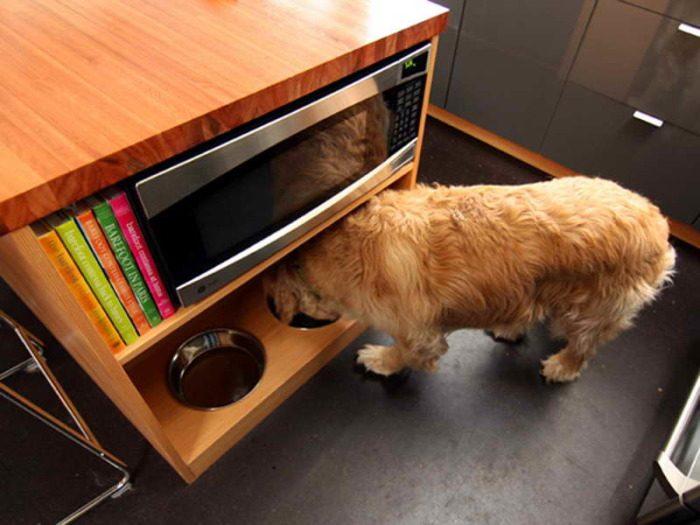 Приспособления для владельцев кошек и собак, которые облегчат уход за питомцами