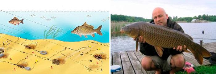 способ рыбалки на карпа