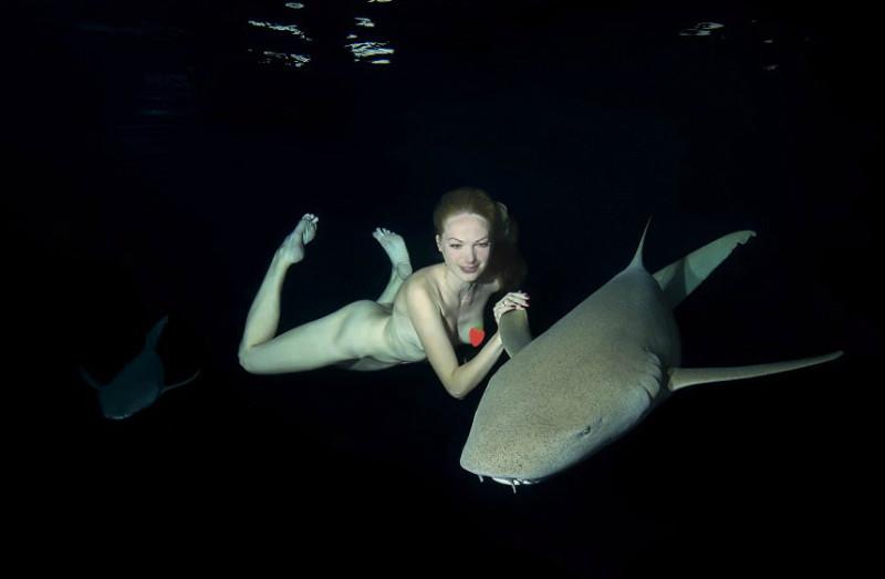 Обнаженная фотосессия с акулами