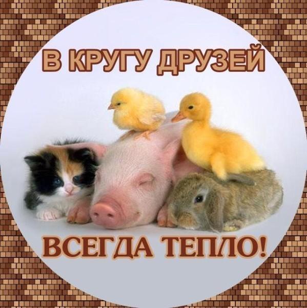 http://mtdata.ru/u3/photo3F80/20841773512-0/huge.jpeg