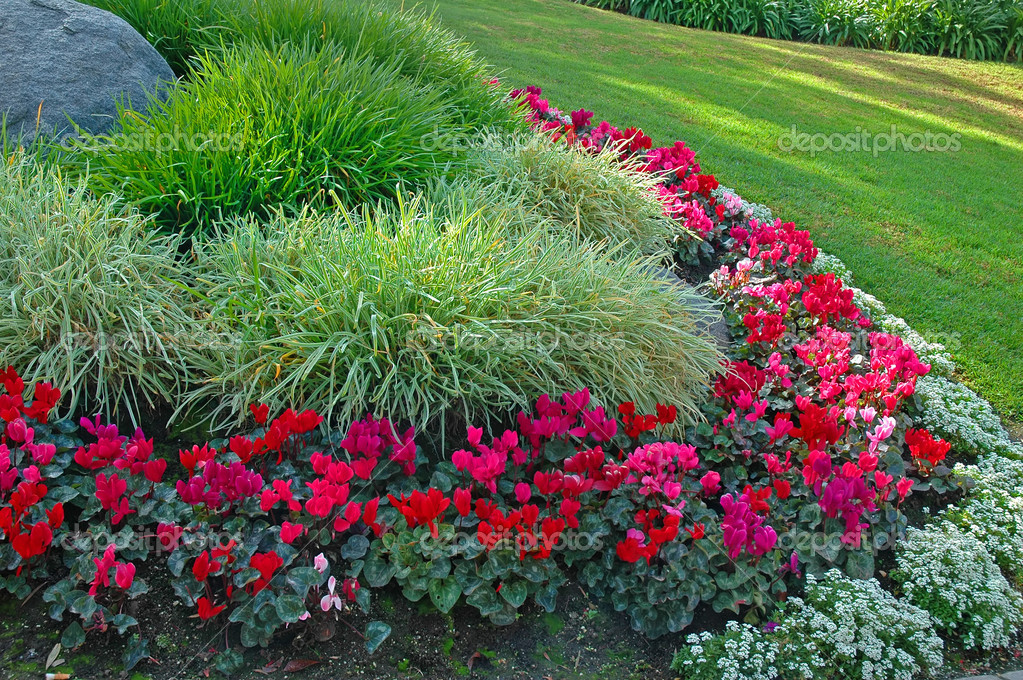Perennial Garden - Stock Photo Verena Matthew #10410175