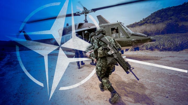 НАТО хочет воевать? Нет, ско…