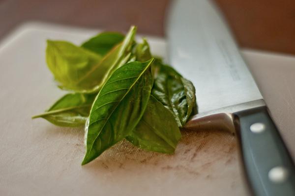 6 специй и трав, обладающих лечебными свойствами