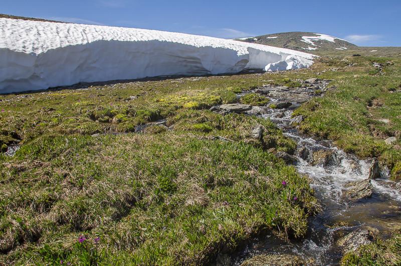 Верховья реки Кара-Булак алтай, путешествия, россия, укок, фото