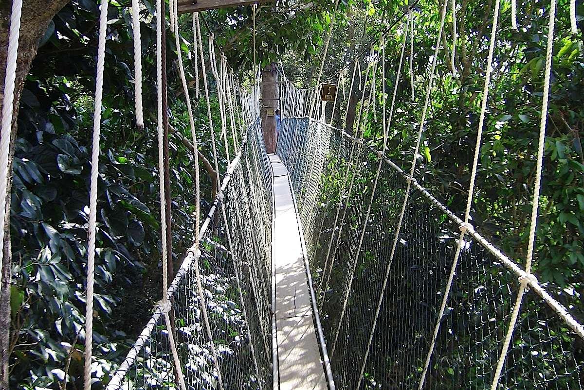 Musou Tsuribashi Bridge