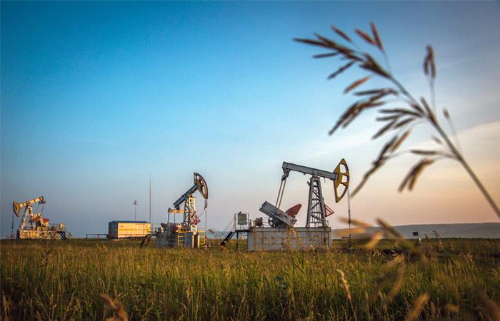 Цена на нефть превысила псих…