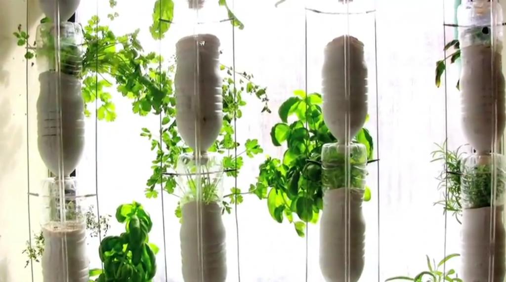 Огород на подоконнике своими руками из пластиковых бутылок своими руками