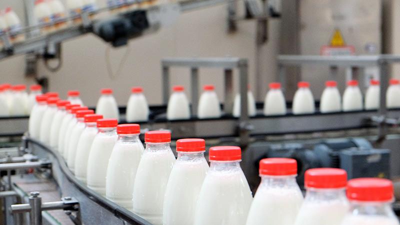 Соли и молока не хватило для безопасности