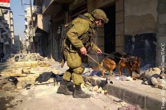 Освобожденный Алеппо преподносит страшные сюрпризы