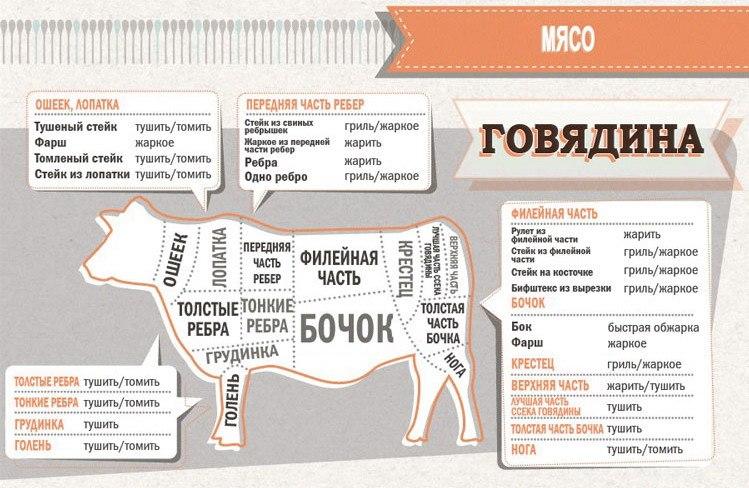 http://mtdata.ru/u3/photo468D/20942526403-0/original.jpg
