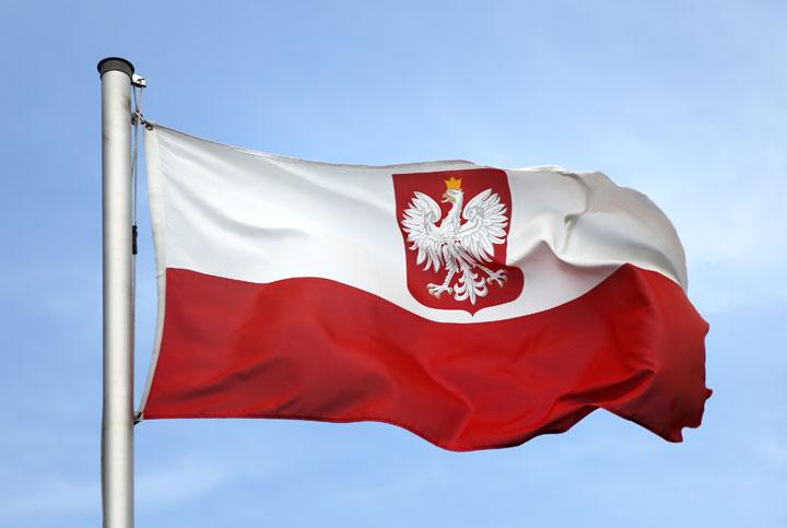 Безоговорочная капитуляция Польши: Россия выиграла «войну дальнобойщиков»