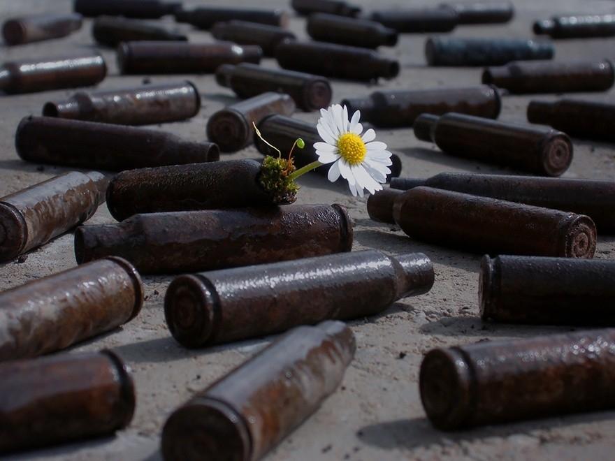 25 фотографий о том, что природа сильнее всего