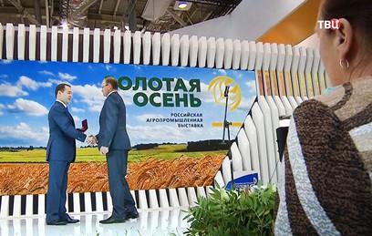 """Медведев на выставке """"Золотая осень"""" наградил работников АПК"""