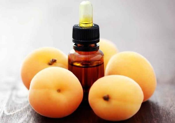Целебные свойства масла абрикоса