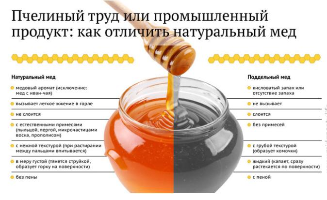 Советы пасечника: как отличить натуральный мед от поддельного?