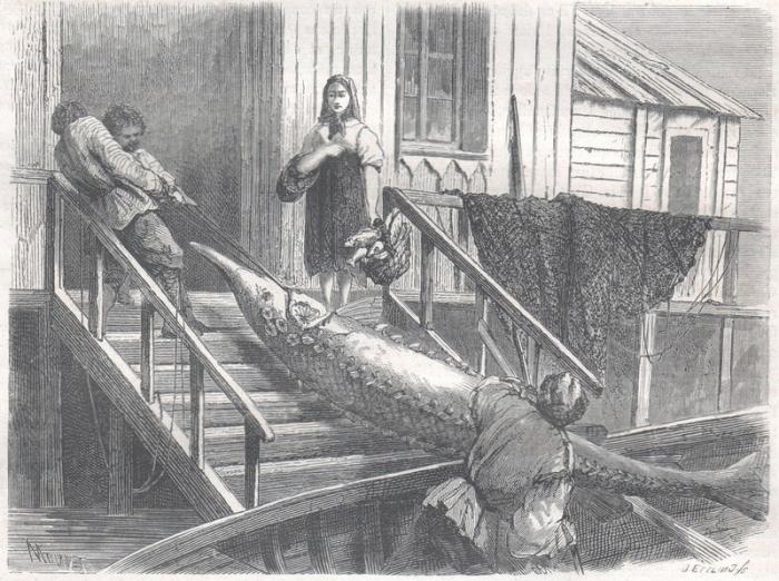 Что русскому хорошо… Зарисовки иностранцев, побывавших в России в середине XIX века
