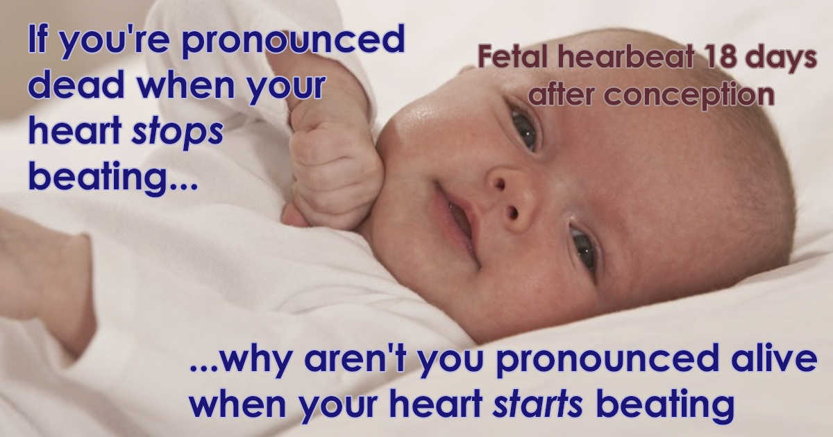 Someone Shares 'Emotionally Manipulative' Anti-Abortion Picture, Gets Destroyed With Facts