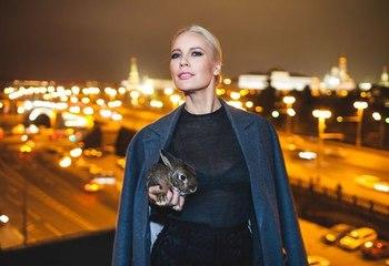 Елена Летучая будет судиться из-за фото на унитазах