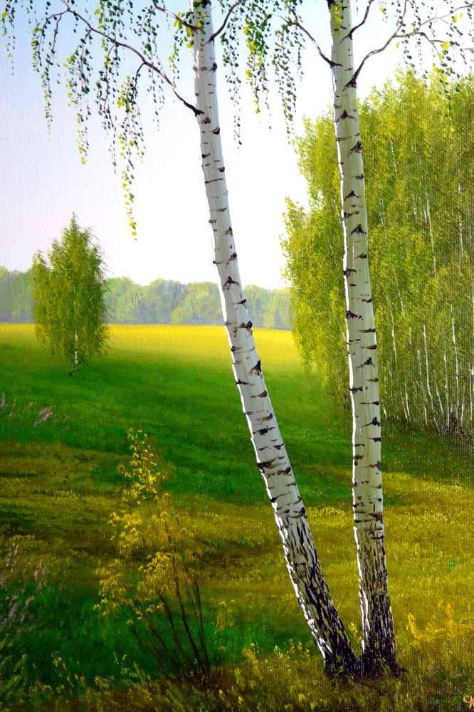 Русские пейзажи художника Се…