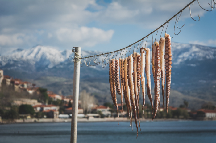 Автор фотографии: Яннис Деметриу (Giannis Dimitriou).