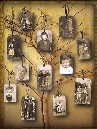 семейное дерево из фотографий в интерьере