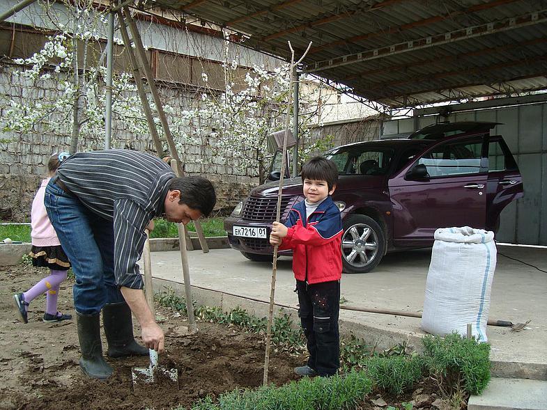 Дом построить, сына вырастить, дерево посадить