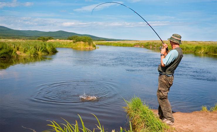 Подмечено на рыбалке