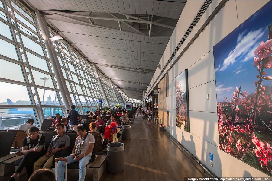 Провести время с пользой. Пять аэропортов с бесплатными экскурсиями