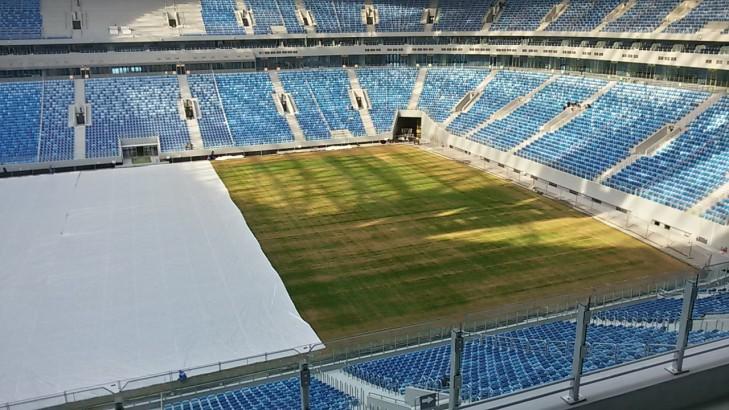 Так сейчас выглядит поле в Петербурге, которое якобы гниет (фото и видео)