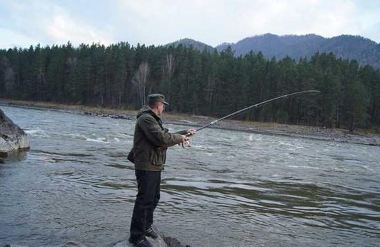 ловят рыбу на алтае