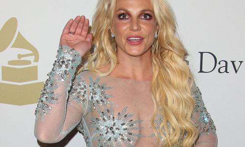 Бритни Спирс похвасталась плоской грудью