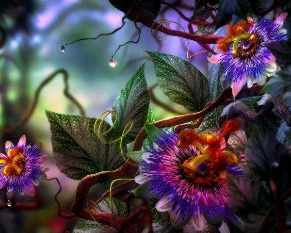 Цветочная магия