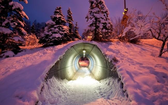 Тоннель под трассой для животных, Финляндия доброта, животные, мир