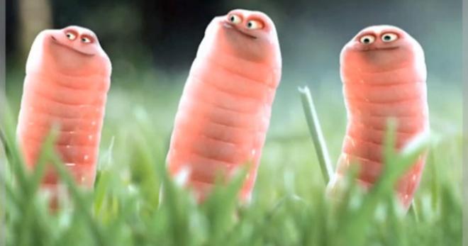 Сонник черви – к чему снятся червяки?