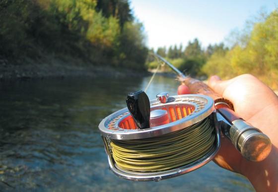 хочу научиться ловить рыбу с чего начать