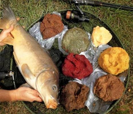 Прикормка для рыбы на научной основе