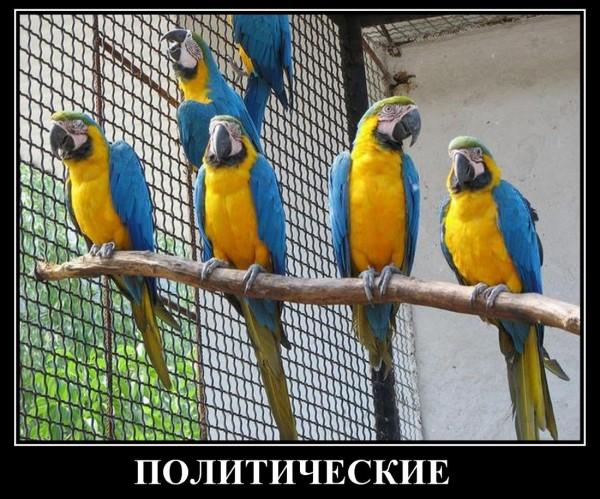 Донецк – «для кого ВОЙНА, а для кого…»
