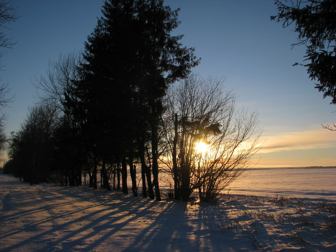 Хроники зимней сказки