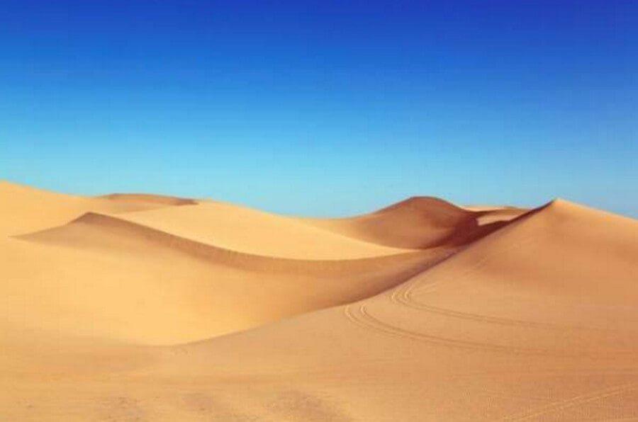 Невероятно, но факт: утонуть в пустыне после дождя может каждый