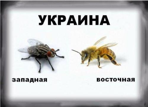 Почему Украина - недогосудар…