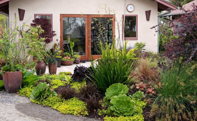 Дизайн территории вокруг дачного домика с помощью сочетания различных растений