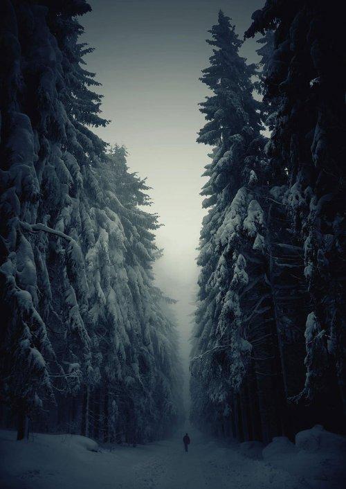 Волшебные тропы, которые так и манят