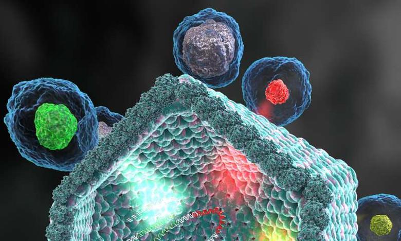 Учеными открыт новый гигантский и сложный вирус