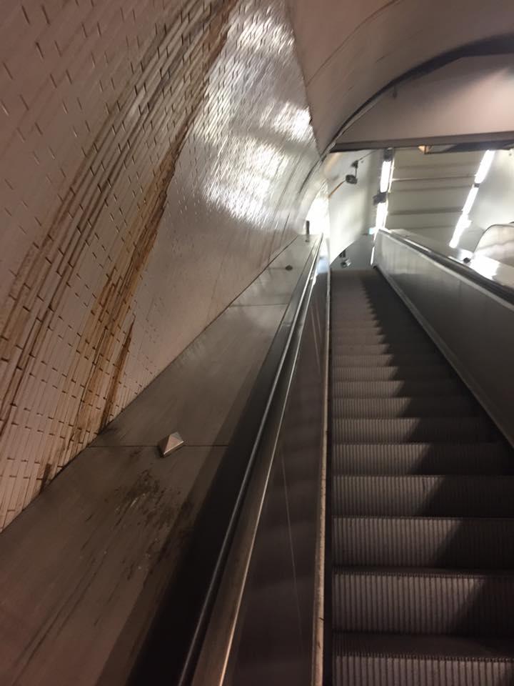 Виды метро Парижа ужаснули украинского политика